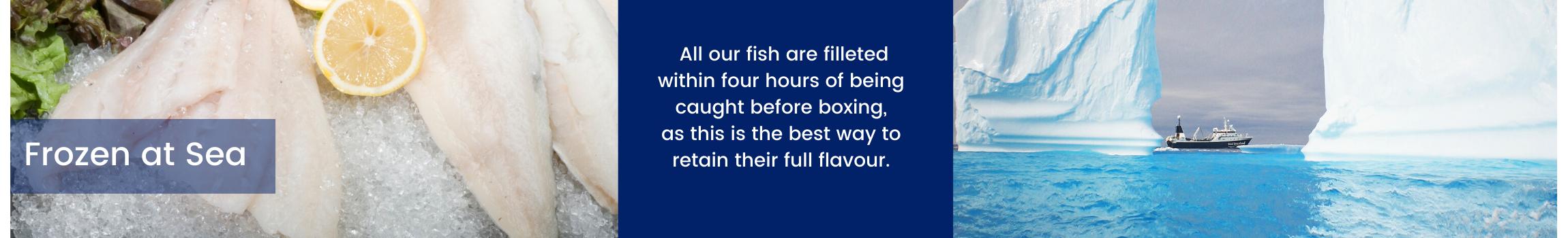 F.A.S. FISH