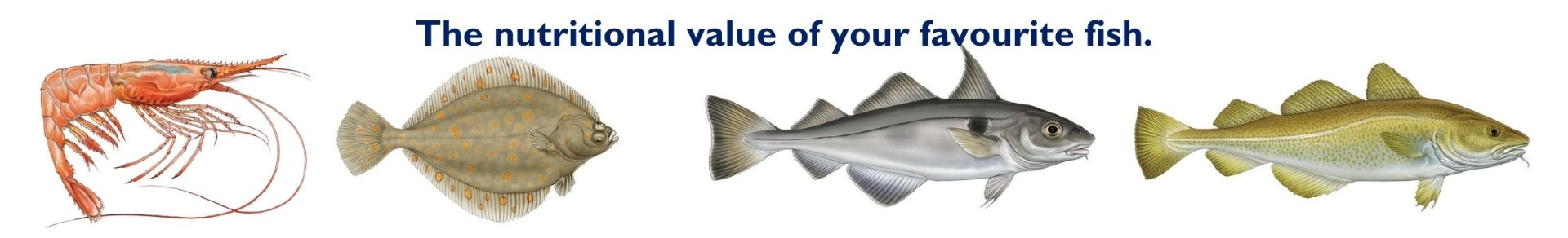 The_nutritional_value_of_your_favourite_fish.
